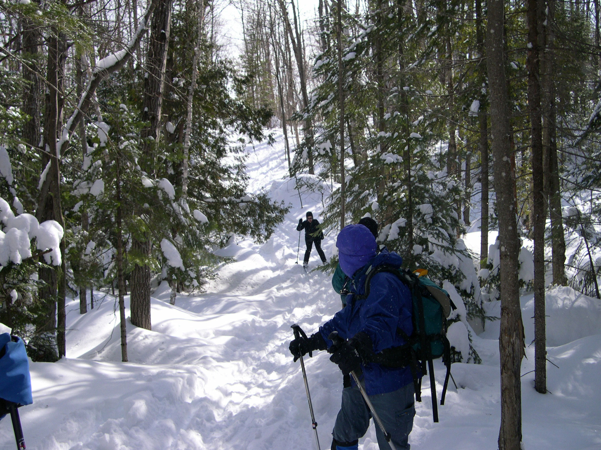 Backcountry Cross Country Skiers